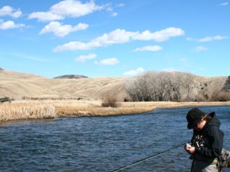 The Beaverhead River