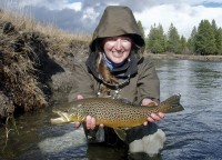Awesome Fall Brown Trout.